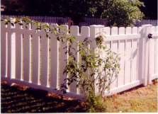 Arizona Semi-Private Style Fence